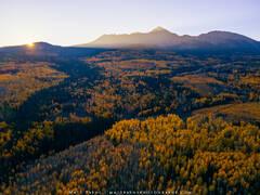 Good Morning Colorado Autumn (2020) print
