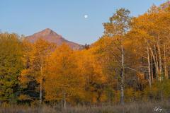 Autumn Moonset in Colorado (2020) print