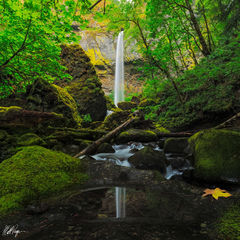 Elowah Falls Reflecting Pool (2014) print