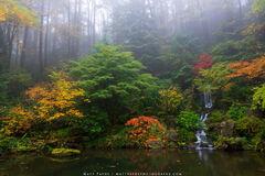 Japanese Garden Waterfall print