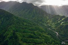 Kauai River Scene (2019) print