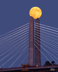 Supermoon at Tilikum Crossing (2014) print