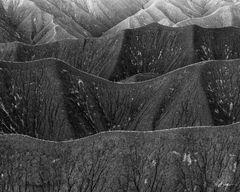 Utah Dunes (2019) print