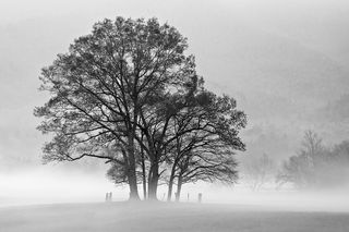 Discovering the Contemplative Style of Landscape Photography with John Barclay