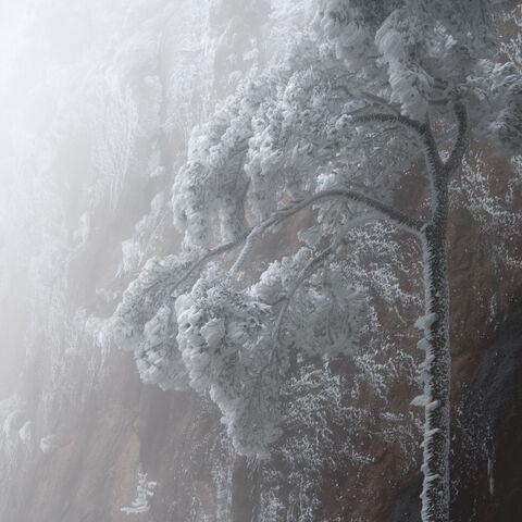 2018, China, Hangzhou, Huangsan, Marsel van Oosten, Squiver, Yellow Mountains, winter, René Algesheimer, Landscape Photography...