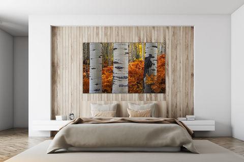 fine art photography print, autumn, luxury