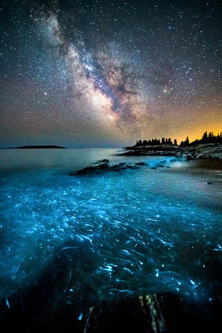 Amazing, Beach, Beautiful, Bioluminescence, Coast, Georgetown, Haunting, Image, Incredible, Landscape, ME, Maine, New England, Night Sky, Photography, Prints, Reid State Park, Rocky, Scenery, Scenic,
