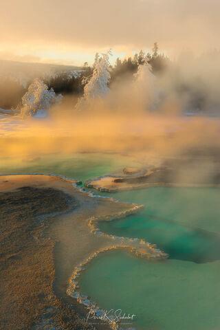 Landscape, Yellowstone, national park, nature, snow scene, winter scene