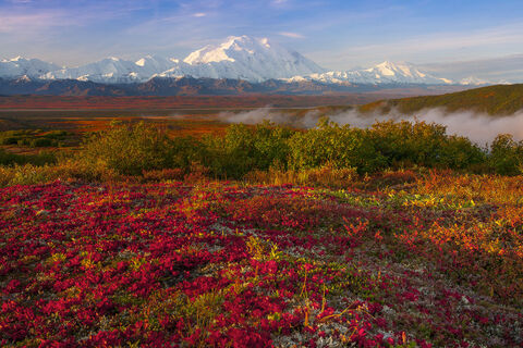 Alaska, Alaska Wilderness, Artic Tundra, Denali, Denali National Park, Denali Park & Preserve, Interior Alaska, Kevin McNeal, KevinMcNeal, Mt Mckinley, National Park, Nikon D810, Singh-Ray Filters, Wo