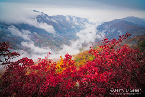 Scenic, Grand Landscape, Appalachian Mountains, Blue Ridge, Pisgah National Forest, Fog filled, Autumn, North Carolina, Botany, deep valley or gorge, Geology, Valley fog, foggy, Clouds, Linville Gorge