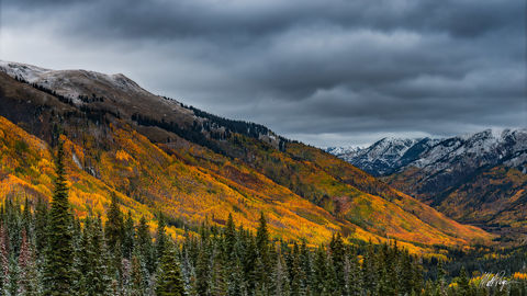 Silverton, Colorado, Ouray, Fall Colors, aspen trees, yellow, gold, panoramic, Red Mountain Pass, moody, cloudy