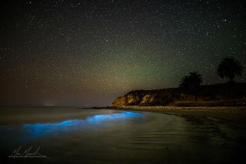 California, Santa Barbara, Stars, United States of America, marc muench, night, refugio state beach