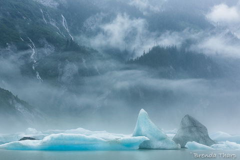 Inside, Inside Passage, Passage, Stikine, art, atmosphere, blue, day, daytime, fine art print, fog, glacial, greeting card, horizontal, ice, icebergs, lake, moisture, moody, nature, nature photography