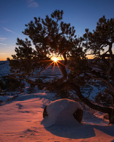 Colorado, Durango, Landscape, Loxia 21, Pinon Tree, Raider Ridge, Snow, Sony A7RII, Sony Artisan, Sunset, Sunstar, Winter