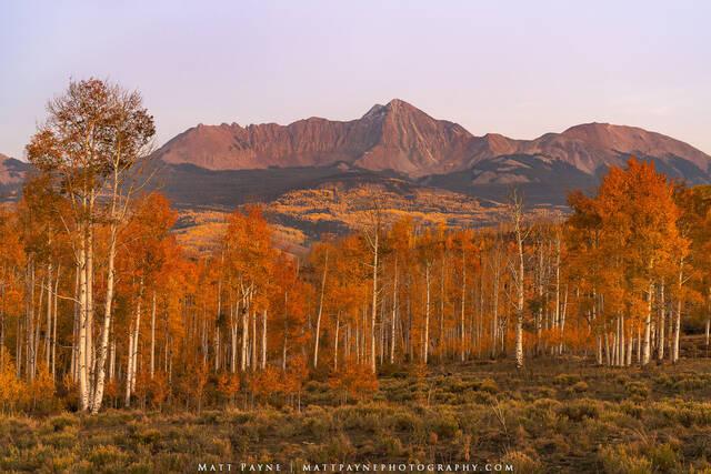 San Juan Mountain Autumn Bliss (2020)