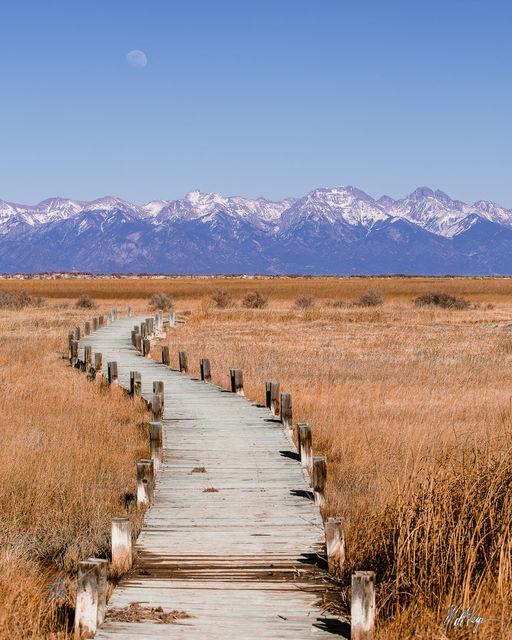 13ers, 14ers, Colorado, Crestone Needle, Crestone Peak, Kit Carson Mountain, Landscape, Mount Adams, Mountains, San Luis Valley, Sangre de Cristo