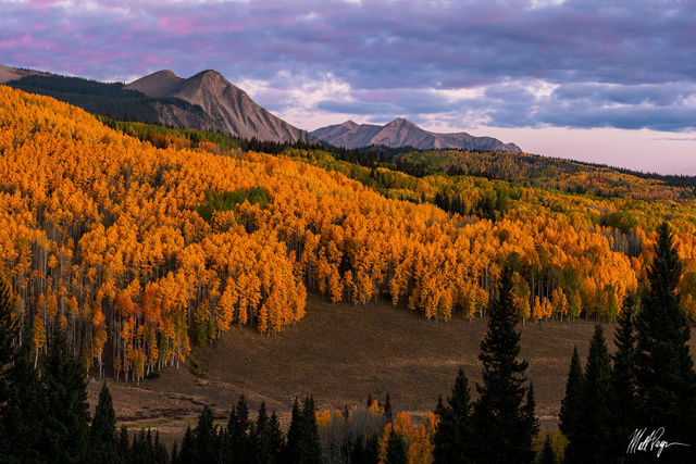 Aspen Trees, Autumn, Colorado, Crested Butte, Fall Colors, Gunnison, Mountains, Ohio Pass, Sunrise, east beckwith mountain, West Elk Mountains