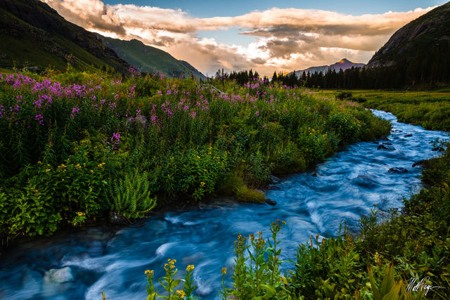 Clouds, Colorado, Ice Lake Basin, Mountains, Stream, Sunset, Water, Wildflowers