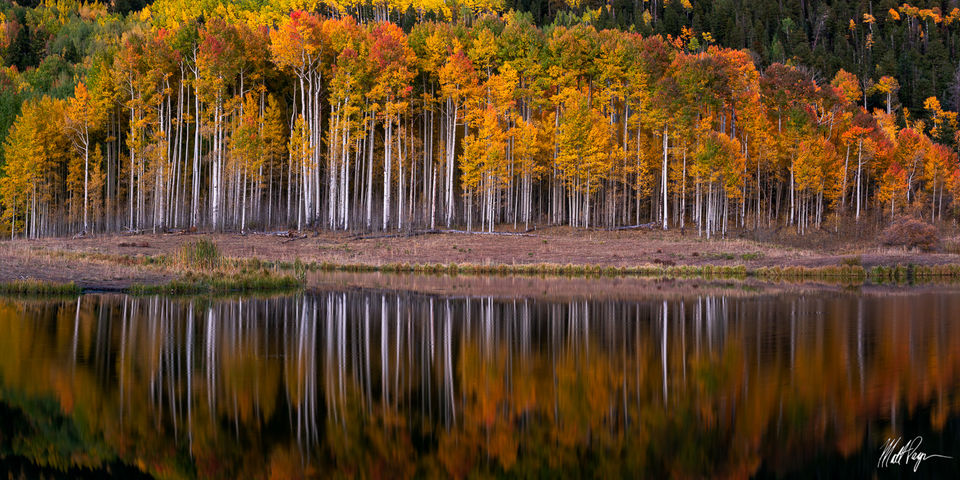 Aspen Trees, Autumn, Blue Hour, Colorado, Fall, Fall Colors, Landscape, Owl Creek Pass, Panorama, Panoramic, Reflection, Ridgway, Silver Jack Reservoir