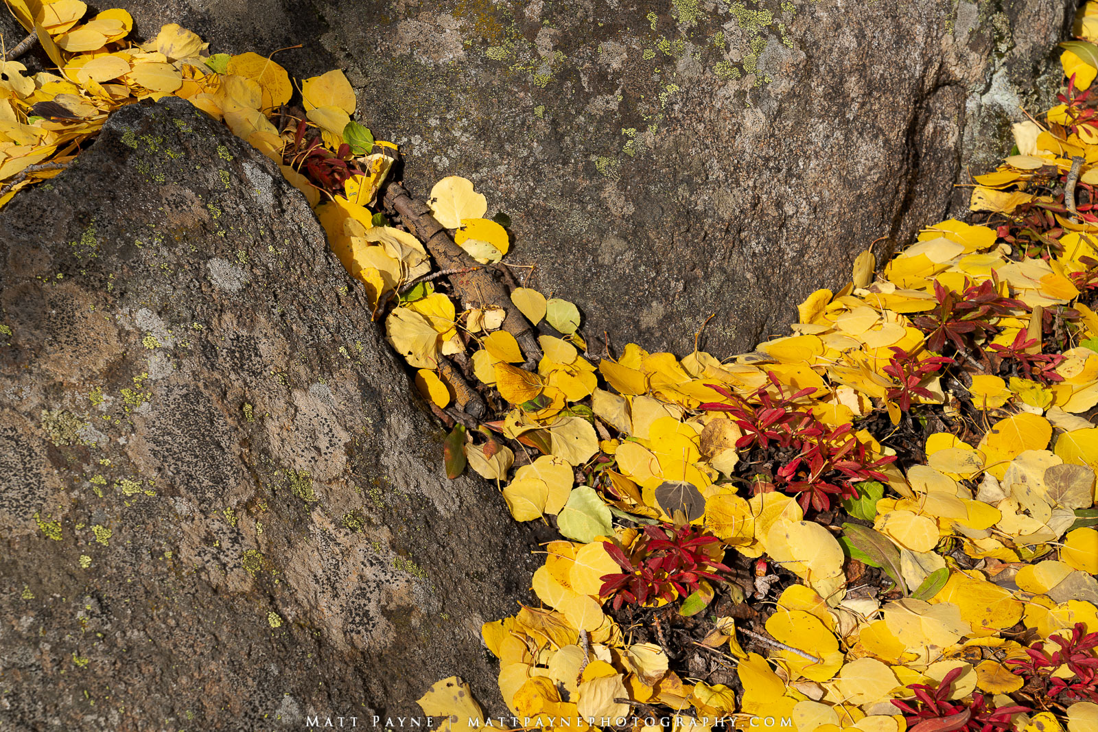 Boulders, Fall, Fall Colors, Foliage, Landscape, aspen leaves, Landscape Photography, photo
