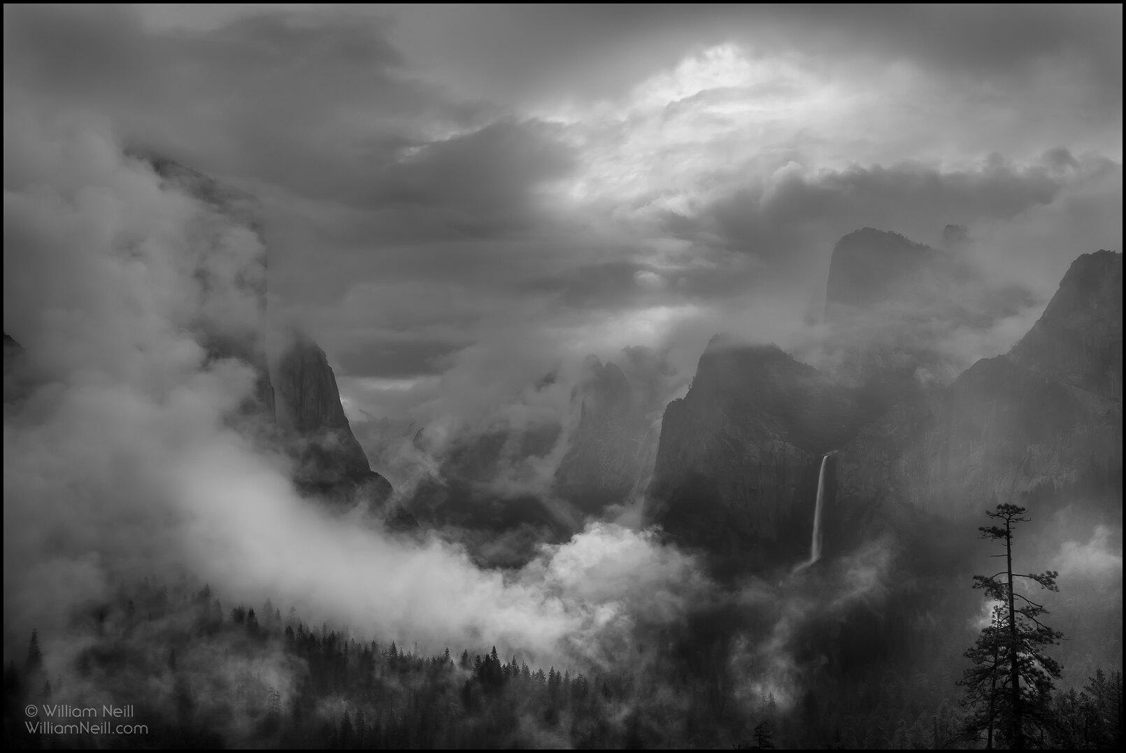 Canon 1DS Mark III, Nature, William Neill Photography, Yosemite National Park, national park, photo
