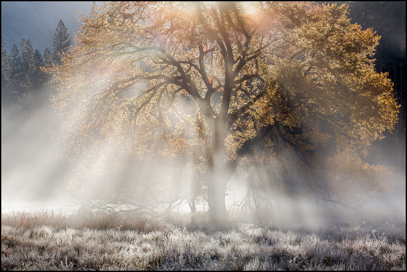 A Conversation With William Neill Reflecting On 40 Years Of Landscape Photography Fine Art Landscape Nature Photography Prints Matt Payne Photography