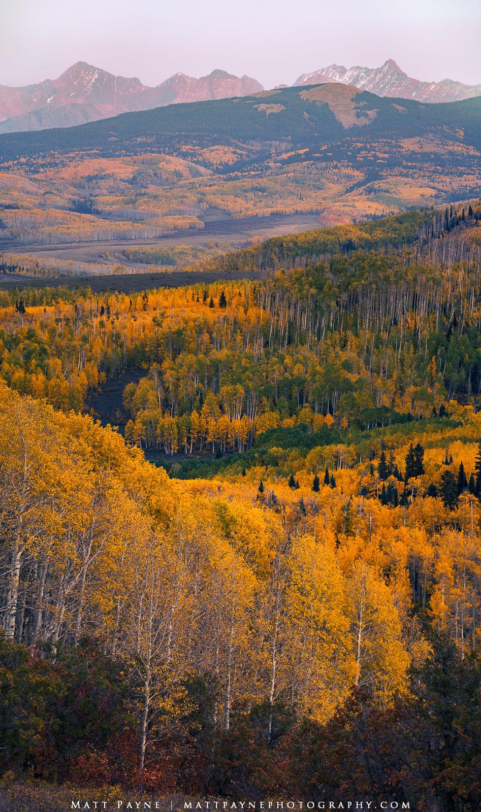 14er, Aspen Trees, Autumn, Colorado, El Diente, Fall, Fall Colors, Foliage, Landscape, Mountains, Panorama, San Juan Mountains, Vertical, Wilson Peak, colorful, landscape photography, scrub oak, photo