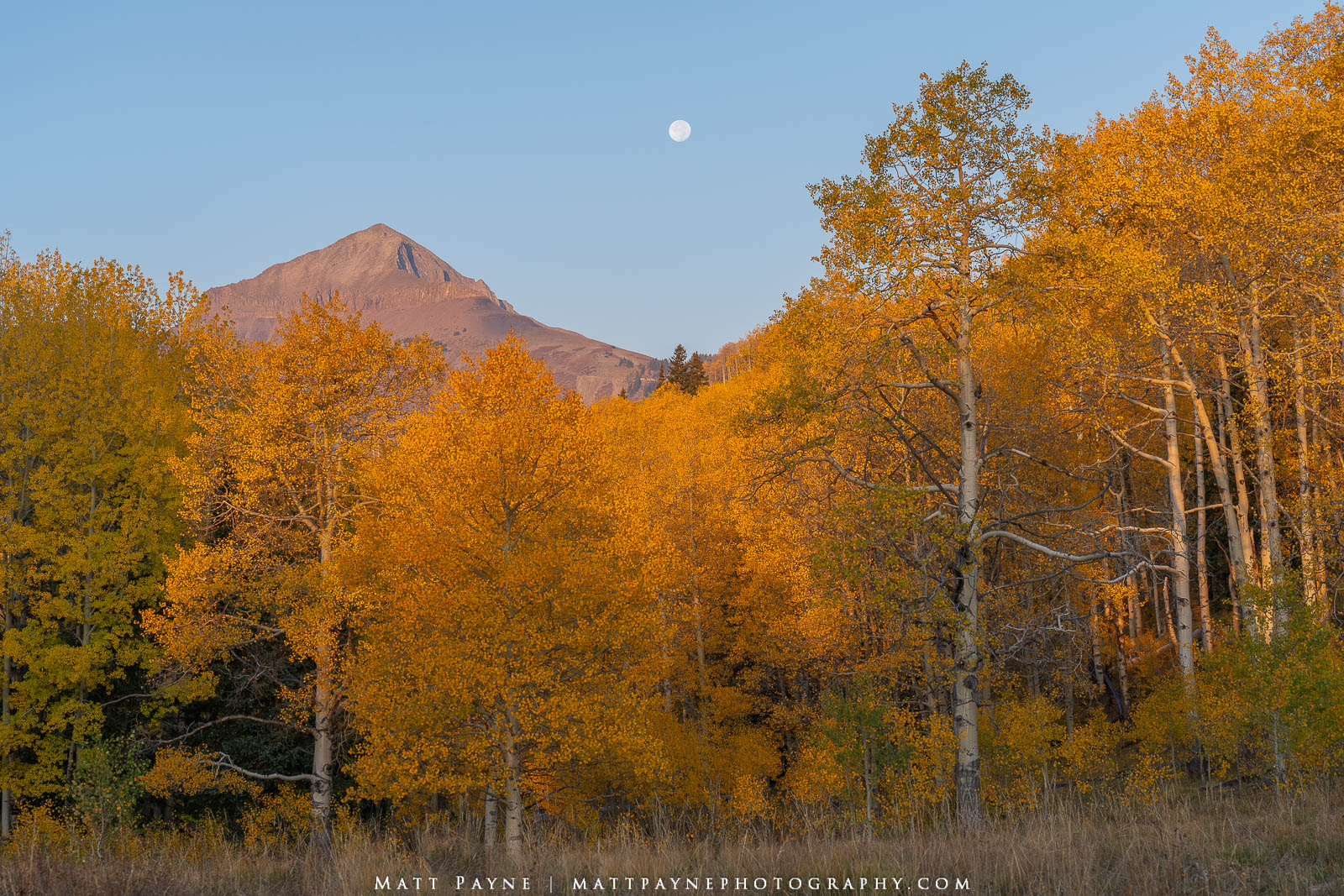 Aspen Trees, Autumn, Colorado, Fall, Fall Colors, Landscape, Moon, Mountains, San Juan Mountains, landscape photography, photo