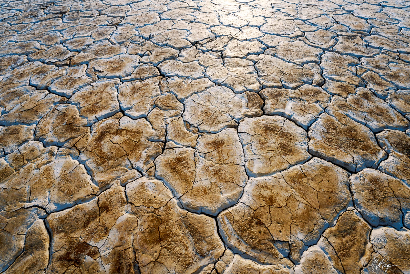 As water dries on mud tiles in the desert, it leaves behind a sheen that is reflected by low sunlight at sunset. Photo © copyright...