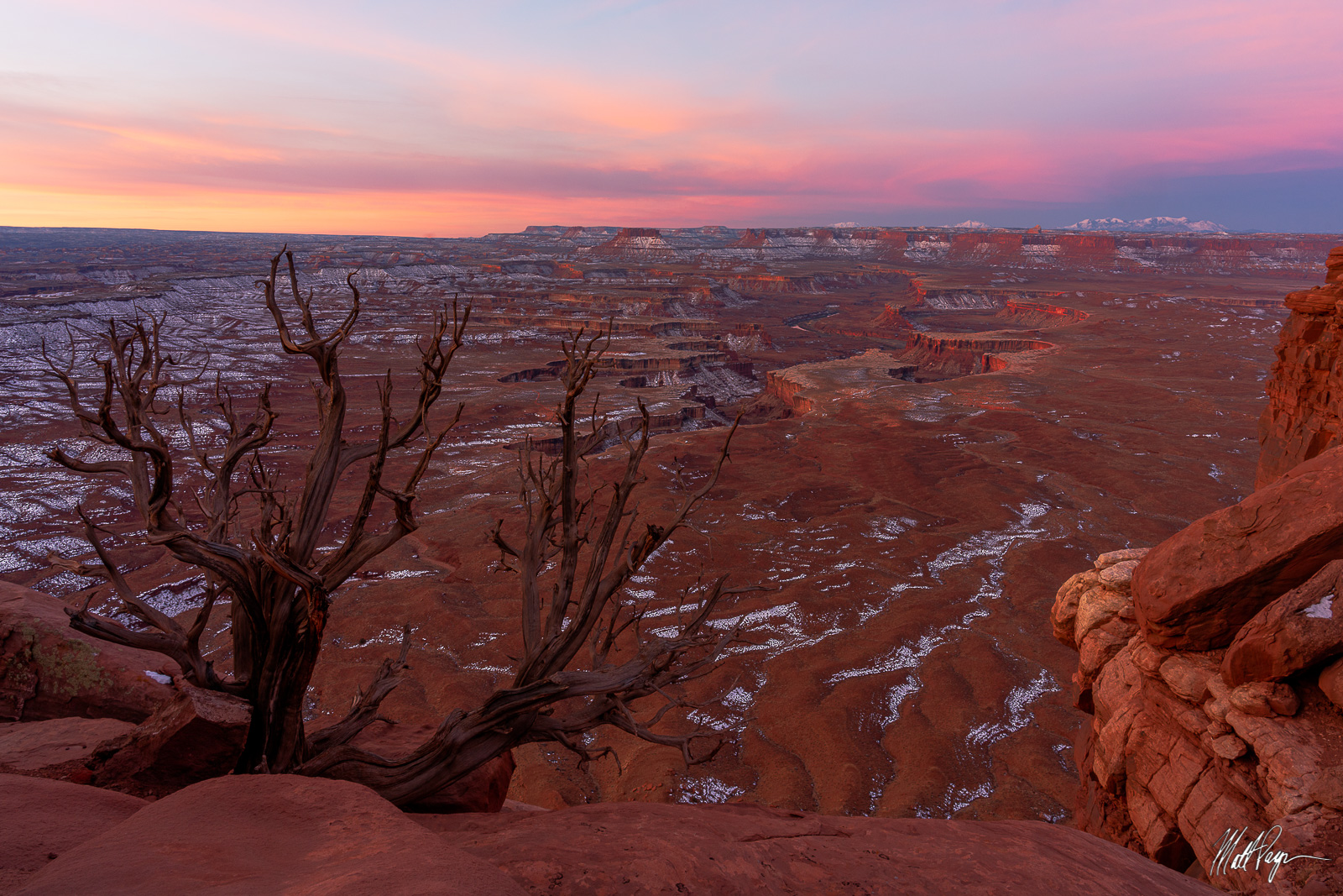Canyonlands, Canyonlands National Park, Canyons, Grand Scenic, Green River, Green River Overlook, Island in the Sky, Mountains, Snow, Sunrise, Utah, Winter, desert, pastel, tree, photo