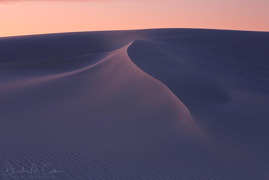 New Mexico, NM, desert, spring, White Sands, White Sands National Monument, gypsum sand, Yucca, yuccas, soaptree yucca, Chihuahuan Desert, Yucca elata, sunset, dusk, dune, dunes, sand dune, sand dunes, photo