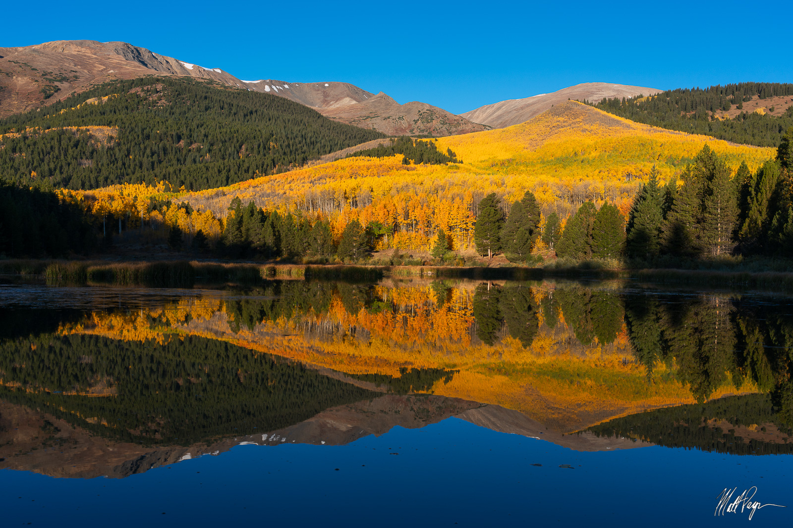 Bull Hill and Mount Elbert rise high above this large beaver pond near Twin Lakes, Colorado. Mount Elbert (right) is the highest...