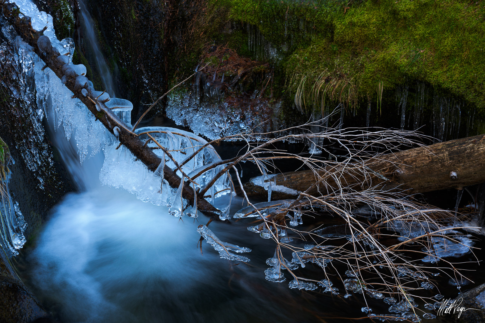 Frozen, Moss, Stream, Winter, Yosemite National Park, photo