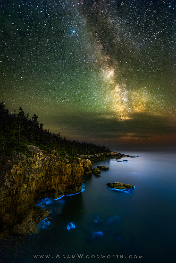Acadia National Park, Maine, acadia, astrophotography, bioluminescence, milky way, new england, night, raven's nest, schoodic, seacoast, stars, photo