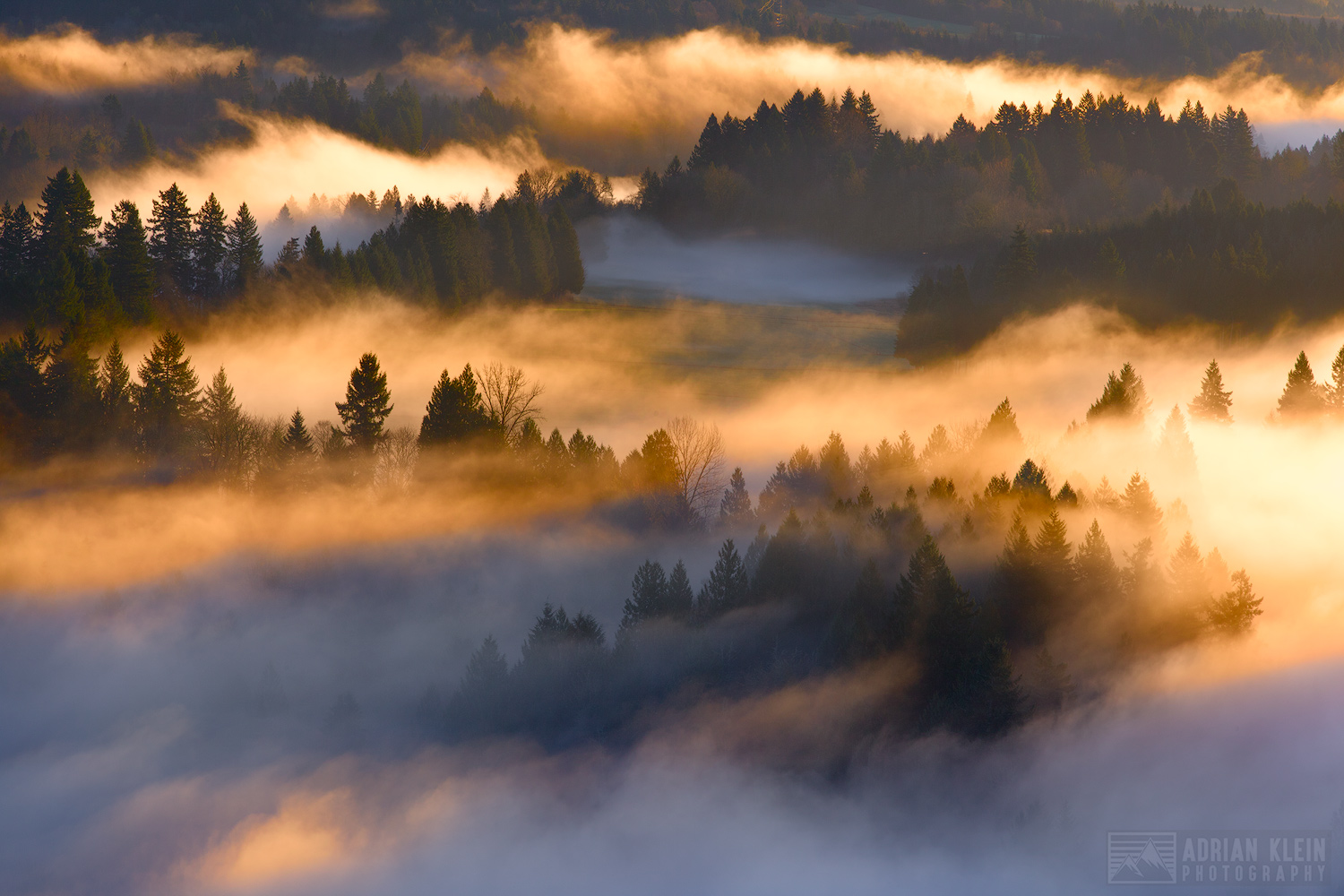 jonsrud viewpoint, sandy, oregon, valley, glow, forest, low level clouds, fog, mount hood, wilderness, farms, drifting, adrian, klein, winter, f-stop, gear, sunbeams, uplifting, cold temprature, everg, photo