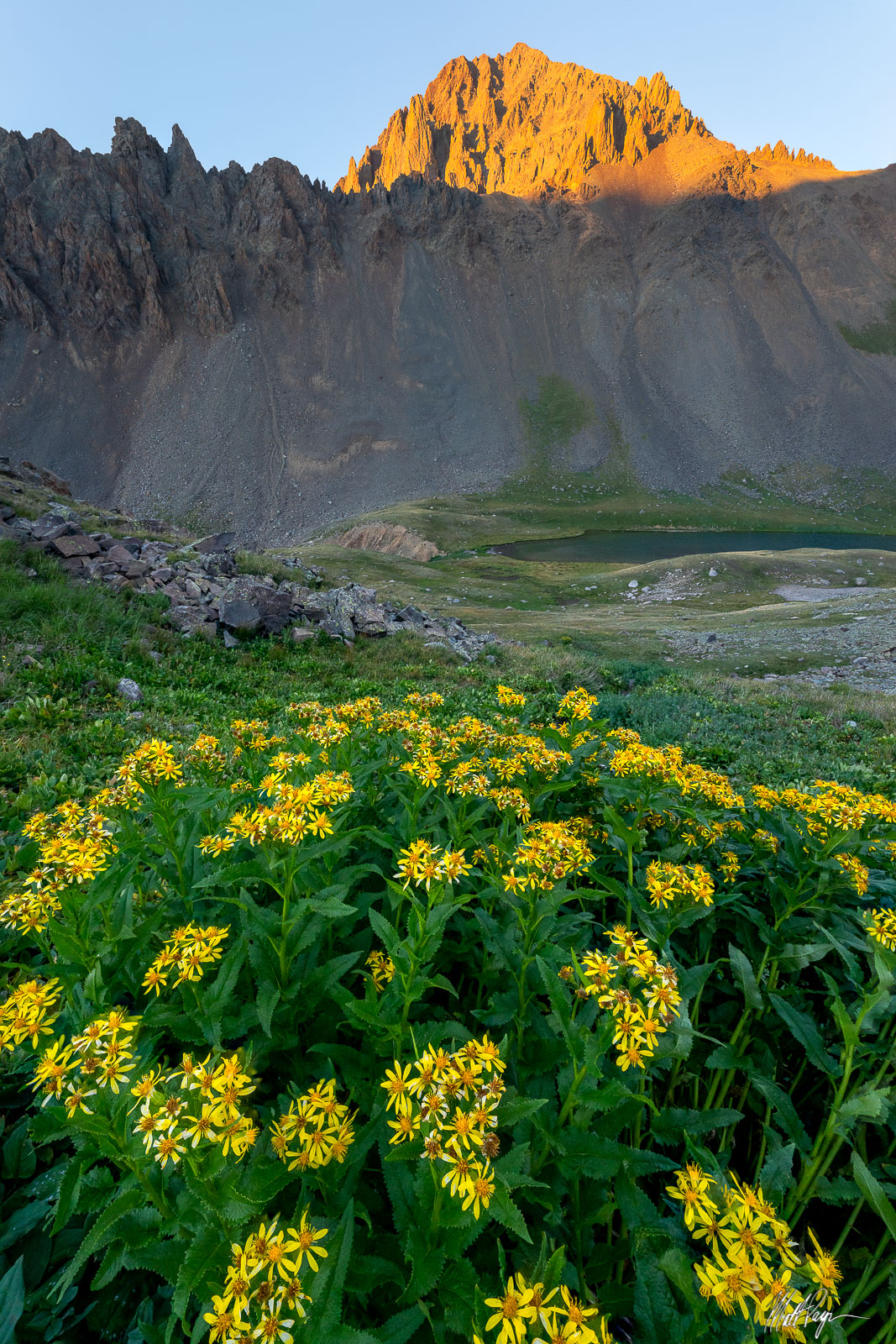 Earlier this summer I decided to backpack up to some high mountain lakes here in the San Juan Mountains of Colorado and was delighted...