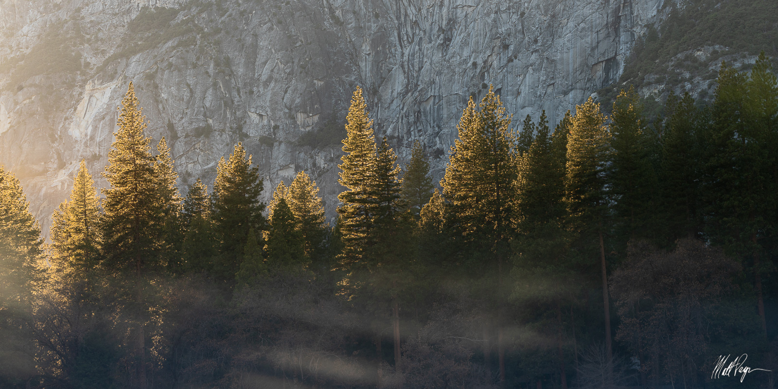 Sunset, Yosemite National Park, trees, panorama, photo