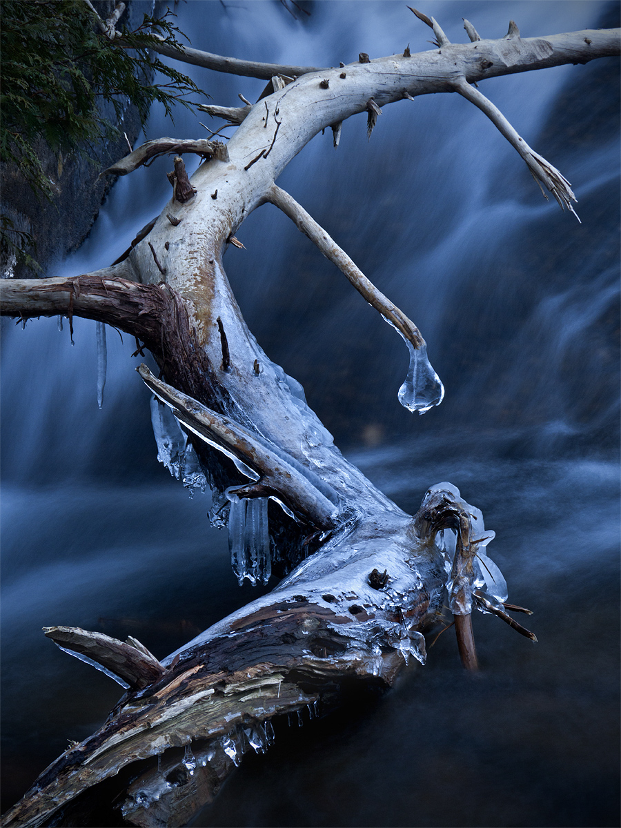 Acadia National Park, Jordan Stream, Maine, Mount Desert Island, USA, Winter, cold, downeast, ice, icicles, northeast, season, photo