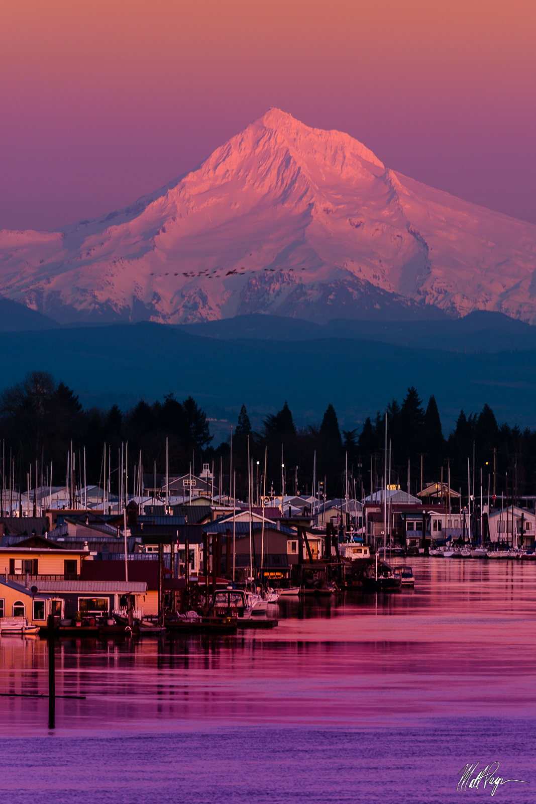 Birds, Harbor, Hayden Island, Interstate 5, Landscape, Mount Hood, Oregon, Portland, Portland Oregon, Reflection, Sunset, Water, Landscape Photography, photo
