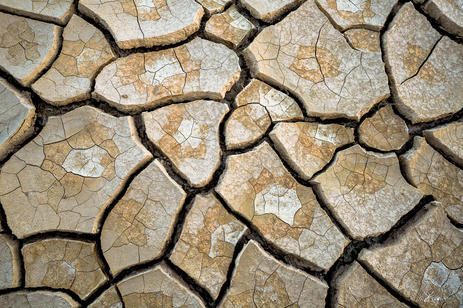 The variety of mud tiles found in the desert can sometimes be an overwhelming thing as a nature photographer. Every few feet...