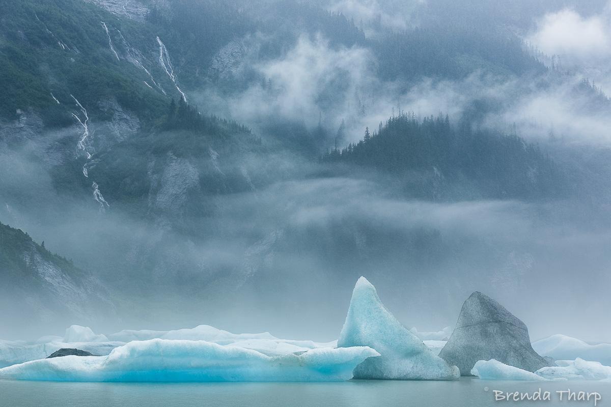 Icebergs, Shake's Lake, Stikine River Wilderness, Alaska.