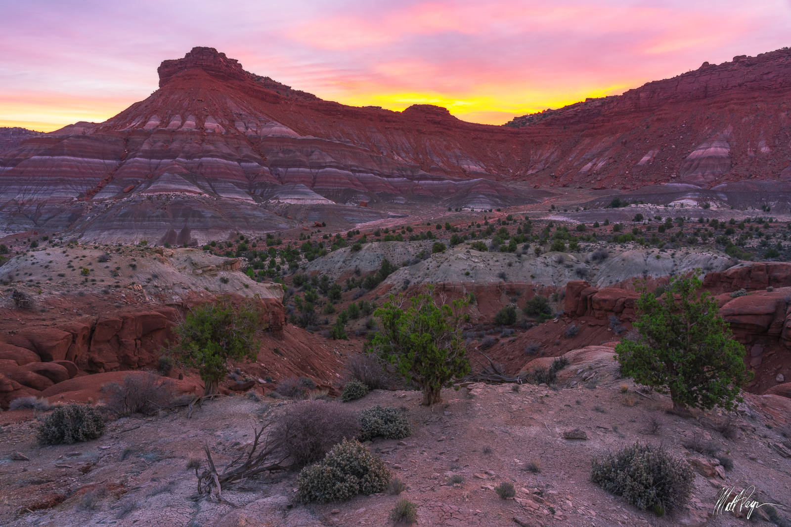 Landscape, Paria, Rock, Southwest, Spring, Sunrise, Utah, desert, layers, trees, photo