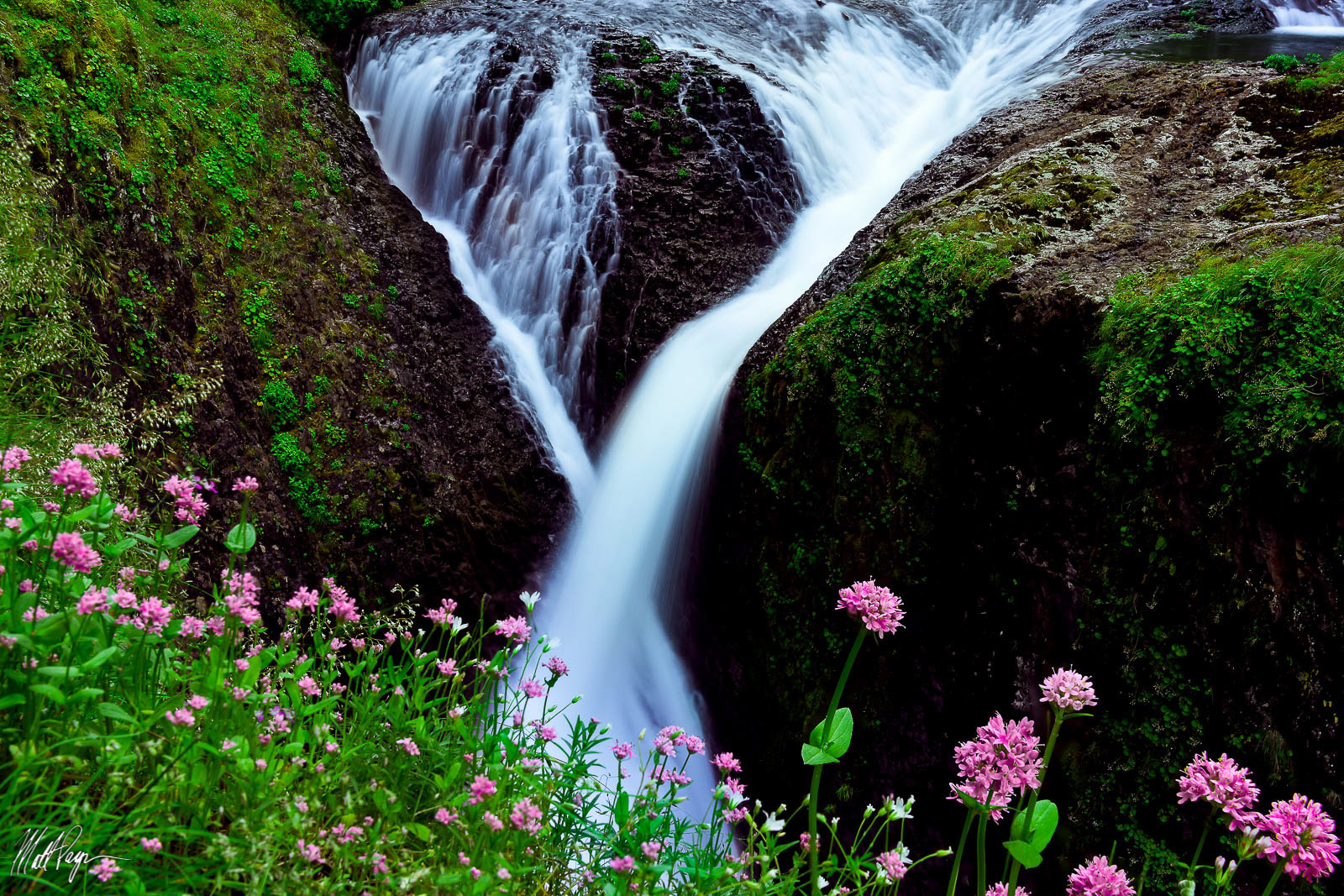 Columbia River Gorge, Landscape, Nature, Oregon, Pacific Northwest, Portland, Portland Oregon, Twister Falls, Water, Waterfall, Waterfalls, wildflowers, photo