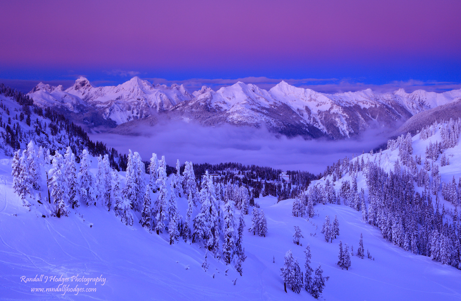 Above the Clouds, Alpenglow, Alpine Trees, Artist Point, Artist Ridge, Cascade Mountains, Cascade Range, Cascades, Destination, Foggy Basin, Mt Baker, Mt Baker National Recreation Area, Mt Baker-Snoqu, photo