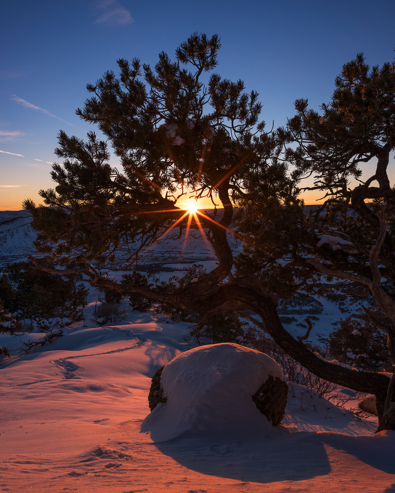 Colorado, Durango, Landscape, Loxia 21, Pinon Tree, Raider Ridge, Snow, Sony A7RII, Sony Artisan, Sunset, Sunstar, Winter, photo