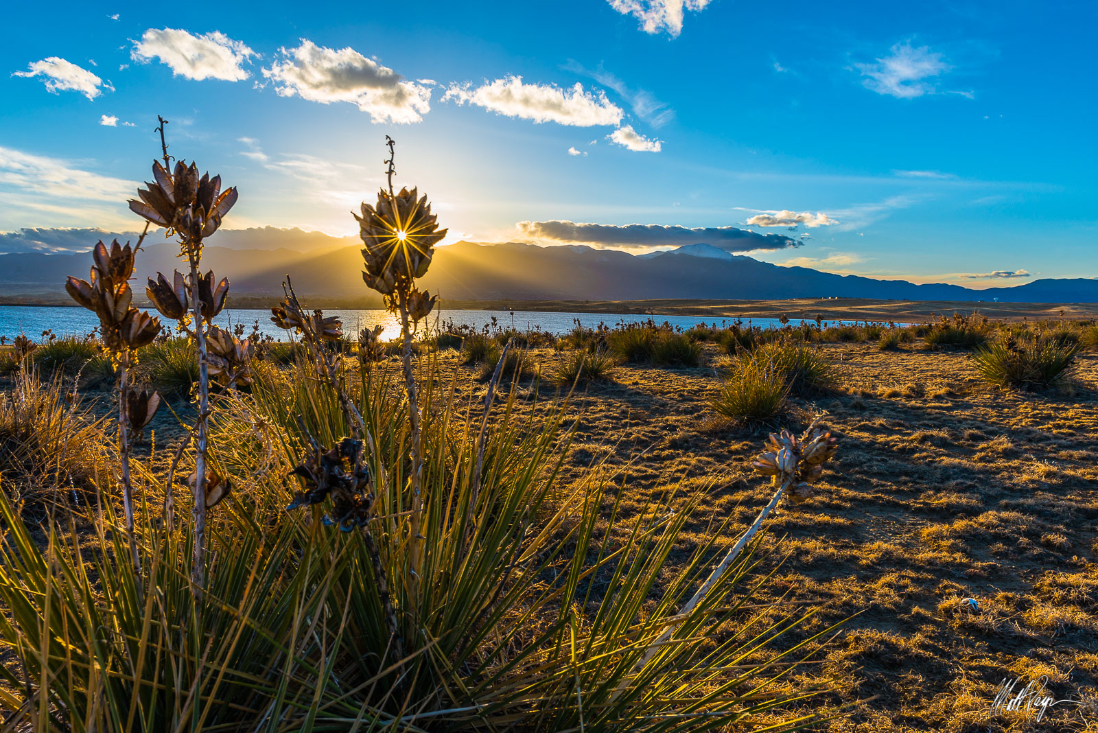 Blue, Bluestem Praire Open Space, Colorado, Colorado Springs, sunstar, Landscape, Light, Pikes Peak, Plants, Praire dog, skull, Yucca, Sunset, photo